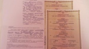 Можно ли при разводе взять девичью фамилию матери, какие документы нужно предоставить?