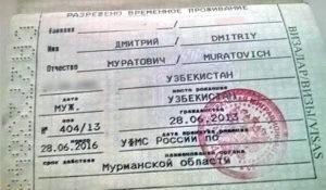 Сколько раз можно пересекать границу РФ и на какой срок если будет оформлено РВП