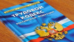 Официальное трудоустройство в соответствии с ТК РФ.
