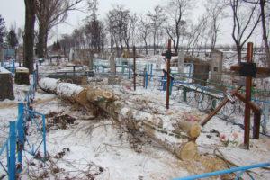 На кладбище упало дерево и погнуло оградку. кто то должен за это ответить?